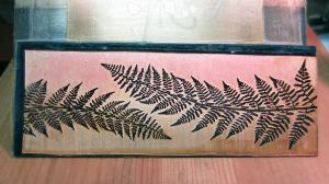 fern design for roll printing